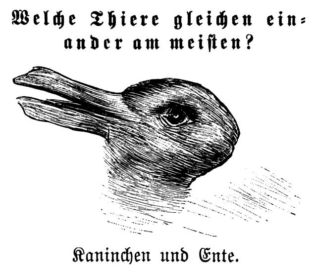 kaninchen_und_ente